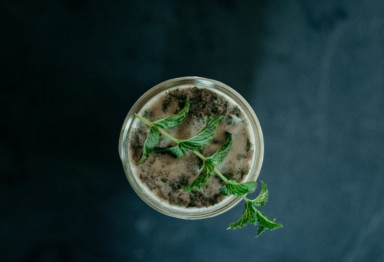An iced coffee topped with a sprig of mint