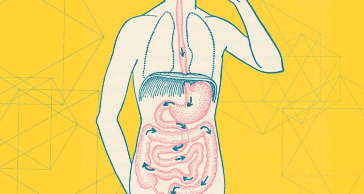 Diet Not Connected To Gi Problems In >> Signs Your Gut Is Unhealthy And Why You Should Fix It