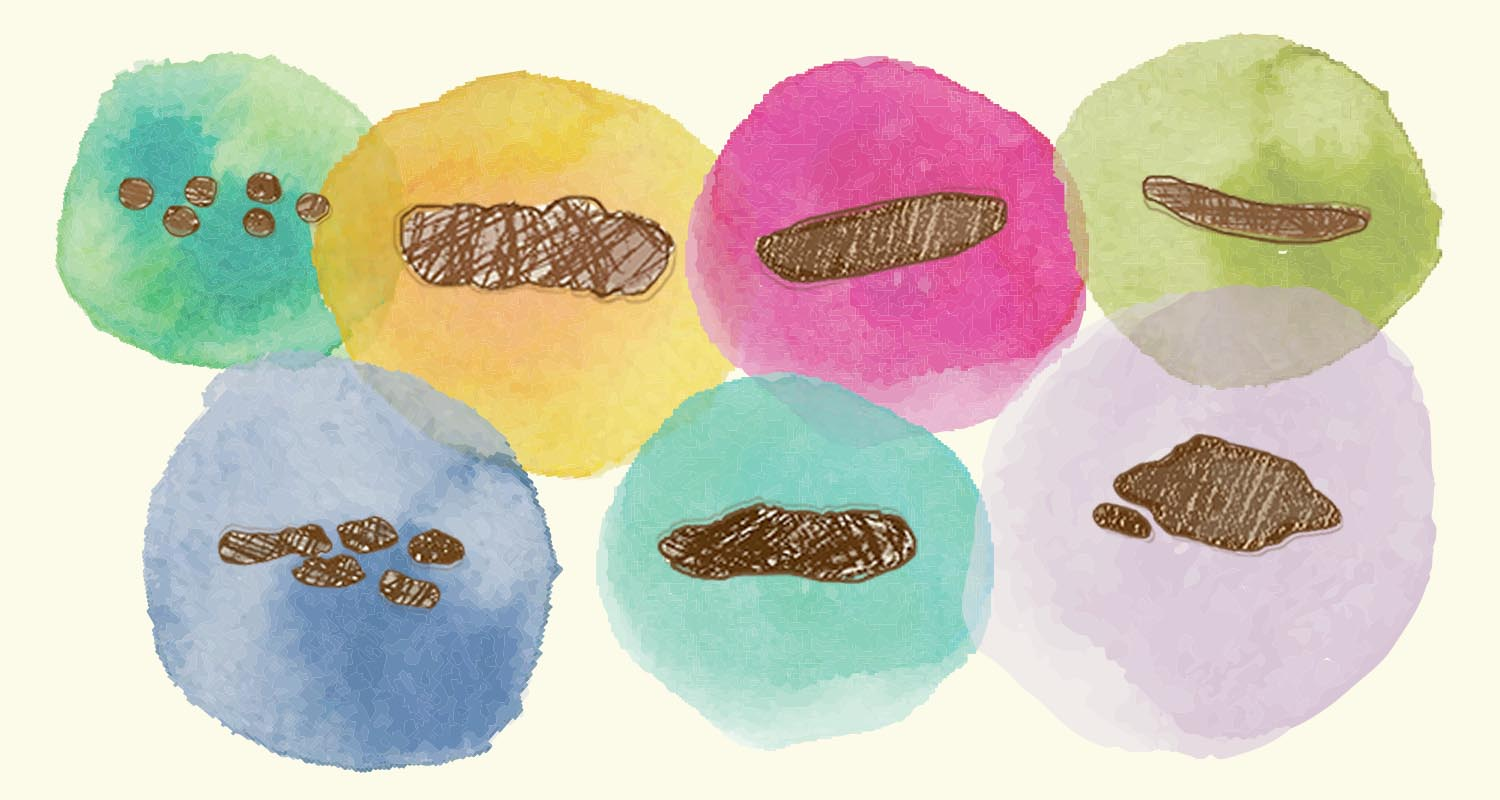 This Poop Chart Tells You Everything You Need to Know About