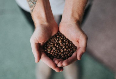 hands offering coffee beans